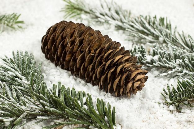 モミの実と雪の中でクリスマスツリーの枝