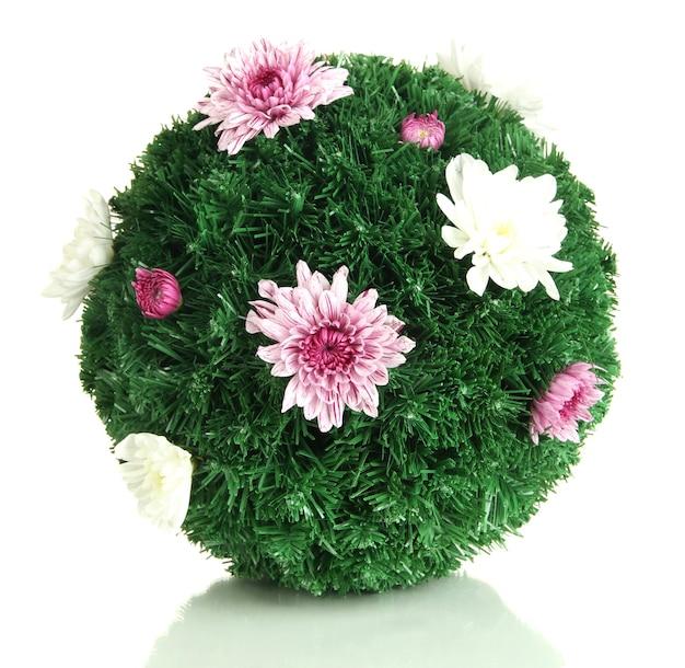 흰색으로 격리된 꽃으로 장식된 전나무 공