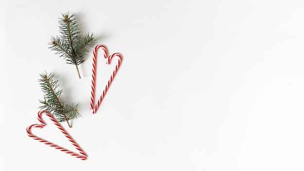 Fir tree branches with candy canes