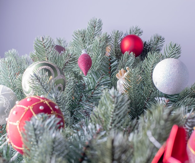 Fir tree decorated for christmas or new year celebration with neutral grey background.