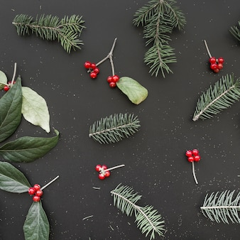 Fir twigs, berries and leaves
