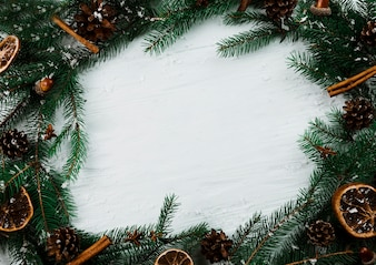 Fir twigs with snow on white board