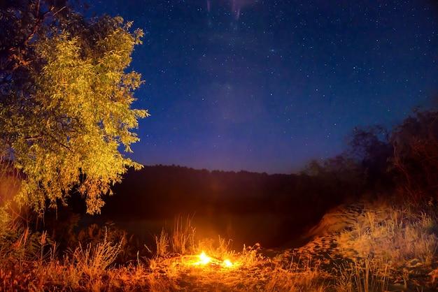Пожар ночью в лесу под ночным небом со звездами
