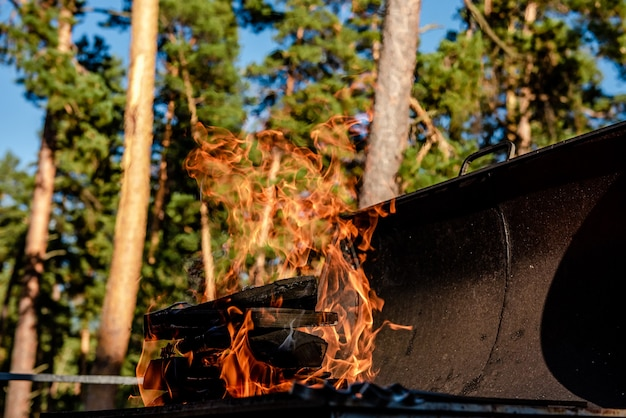 Fire burning in a brazier in nature in summer