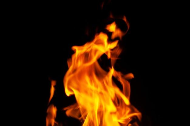 Огонь. горящие дрова в камине крупным планом.