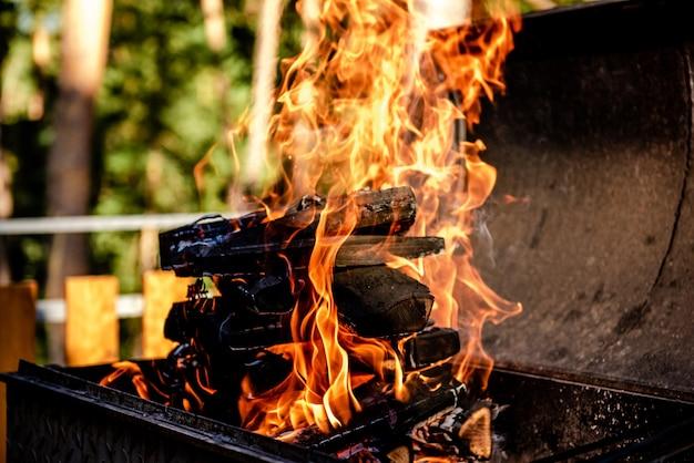 여름에 자연 속에서 화로에서 타는 불