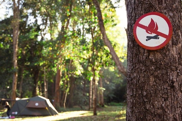 Fire danger sign on the tree. icon of prohibition of fire risk at the woods. it is forbidden to light a fire on a camping tent at a natural park. stop burning nature resources. prevent deforestation
