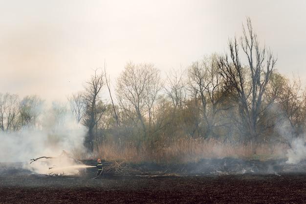 消防署が活動し、消火活動を行っています。夏の高温は火事を引き起こす