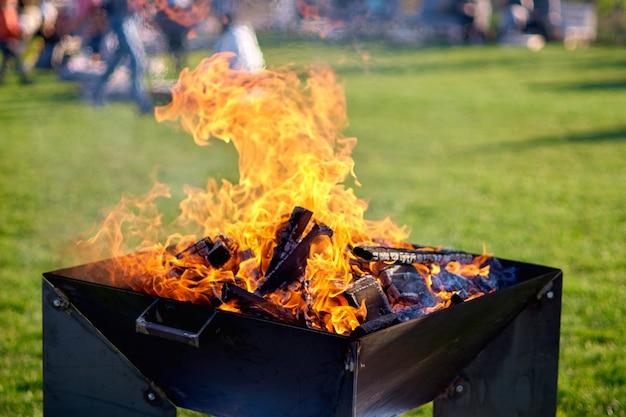 ピクニックのための緑の芝生でのピクニック中に火をつける