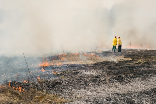 Fire fighters on burned agriculture terrain