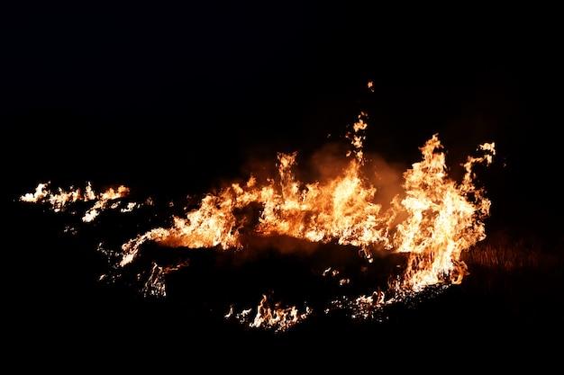 추상적 인 배경 어둠 속에서 불 불꽃