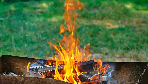 Fire, flames from wood ember for grill or bbq picnic, fume and firewood outdoor