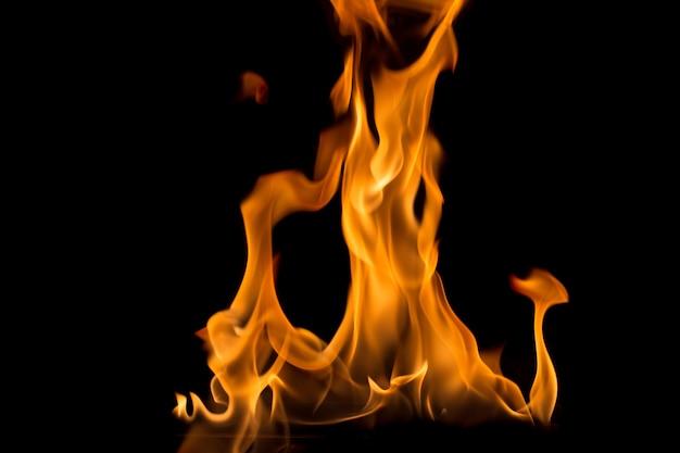 검은 배경에 불