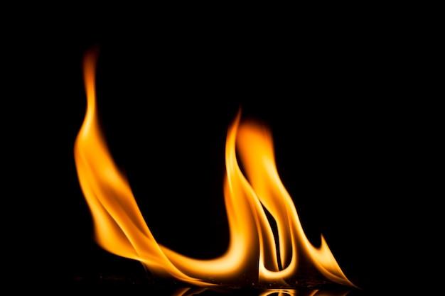 Пламя огня на черном фоне.
