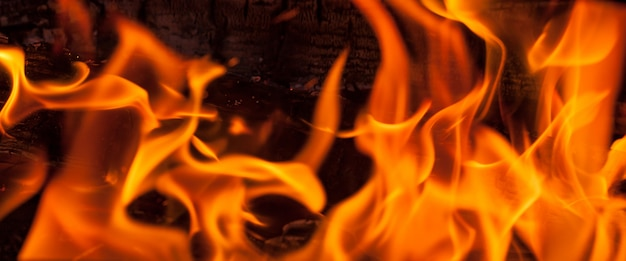 Fire flames, panorama view