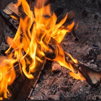 Огонь в природе. костер в лесу для гриля.