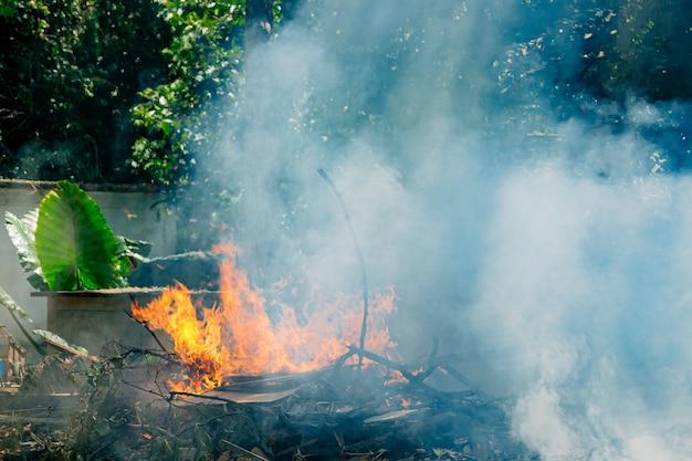 많은 연기와 재가 많은 열대 우림의 화재