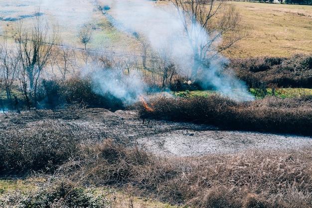 Пожар в лесу днем горит албанский лес