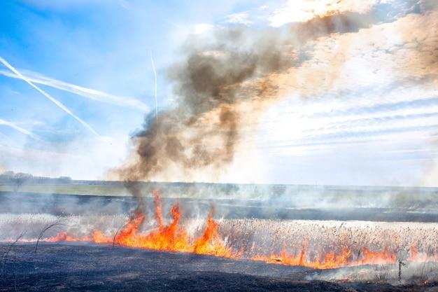 川の対照的な風景に火をつける