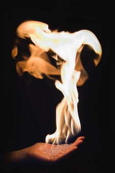 Fire in the palm of your hand. on a black background.