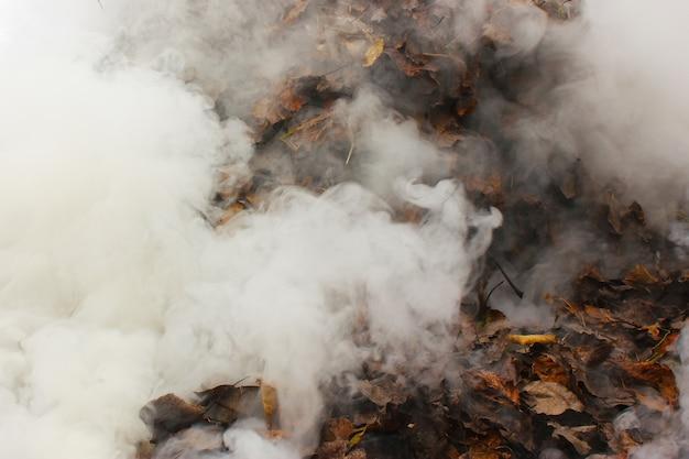 煙の雲を発射し、燃えたままにし、煙とテクスチャー
