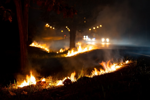 Fire over the wild side of the road, the flame of burning at night