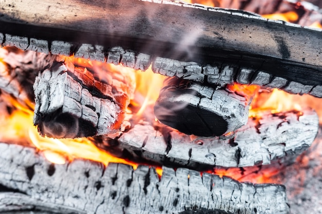 Fire with coals and fire on nature picnic background