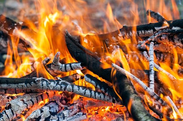 熱い燃えるfire炭のクローズアップ