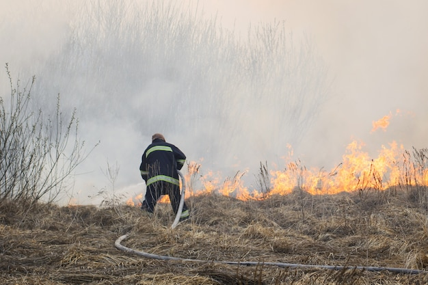 Пожарный сражается с лесным пожаром, распространяющимся по сухой траве и кустам в болоте