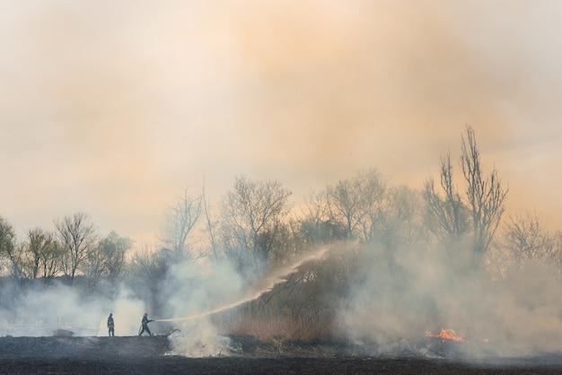 山火事との消防士の戦い。消防士が訓練しています。消防士は消火活動で泡や水を使用しています。