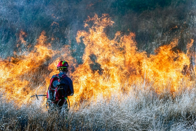 Firefighter trying to put out a forest fire
