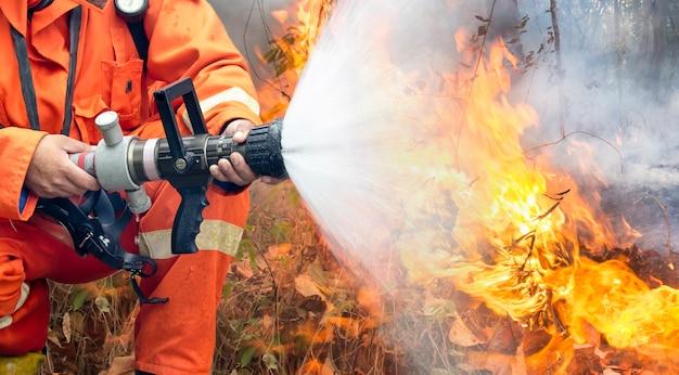 消防士は山火事と戦う
