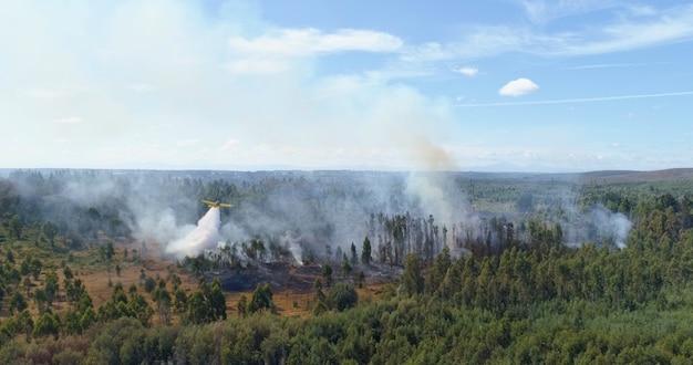 森林の火を消すために大量の水を落とす消防航空機。チリ。