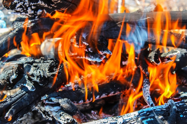 Firewood burning in the fire