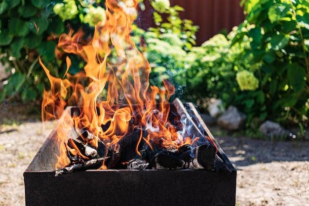 Горение дров в мангале. отдых на природе. горячие угли. костер огонь.
