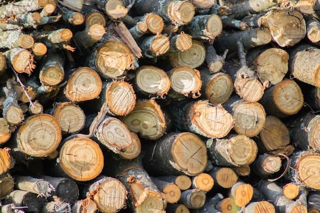 Firewood stack close up