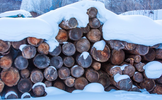 Firewood stacked in the cut wood, timber, firewood