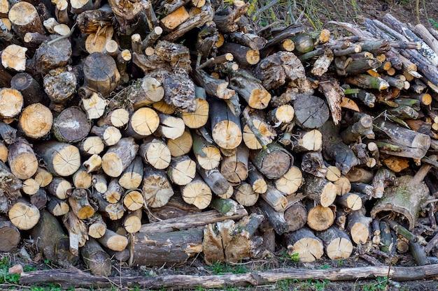 山に積み上げられた薪。薪の収穫。薪のテクスチャ