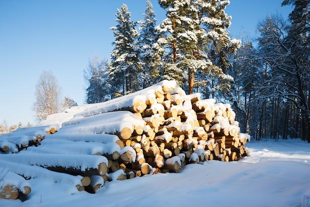 Дрова под снегом в зимнем лесу