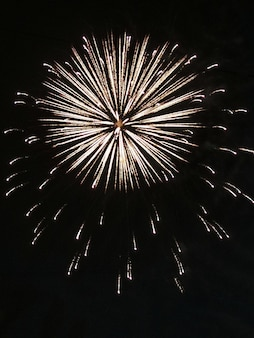Fireworks, explosion on a black background, festive fireworks for the new year, 4th of july, birthday. can be used as a design element for your photos