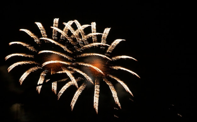 Fireworks in the form of a flower against the night sky