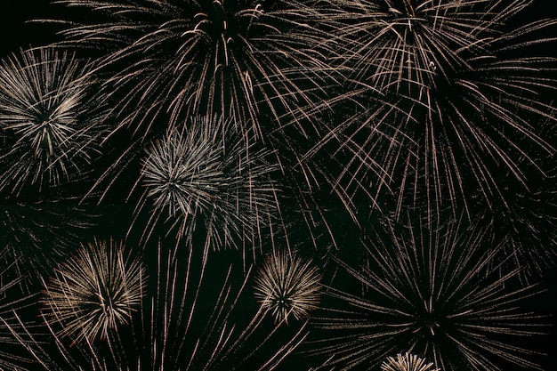 Fireworks light up the sky, independence day celebration. night show. victory day. festive fireworks. new year's night. decorations for a festive party. american holiday. day of canada.