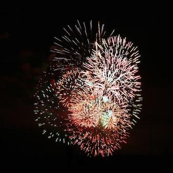 Fuochi d'artificio piacevole concentrazione di colori