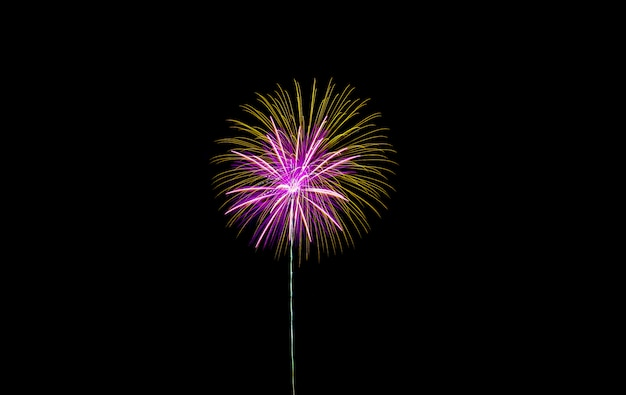 Fireworks in the night.