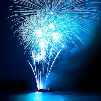Fireworks, salute with the black sky