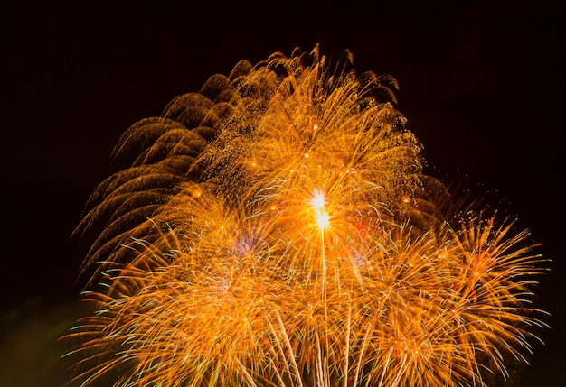 Fireworks in the sky at suan luang rama 9 thailand.