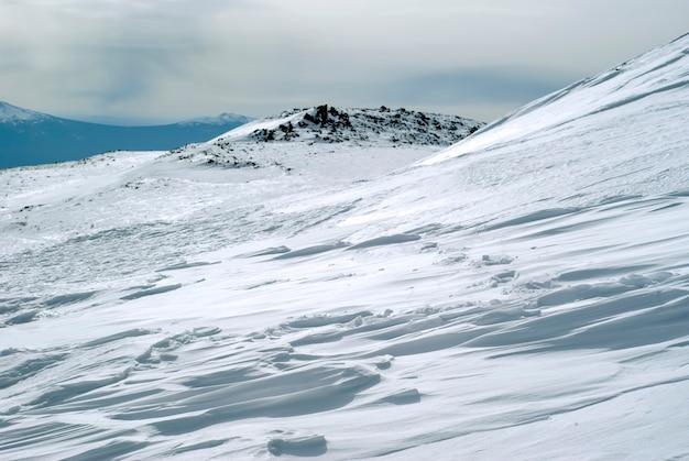 바위가 많은 산 풍경을 배경으로 konzhakovskiy kamen 산의 경사면에 있는 전나무