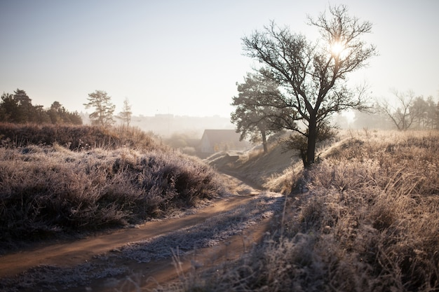First autumn frost on the road. road in autumn. a colourful curving autumn road.  morning autumn landscape