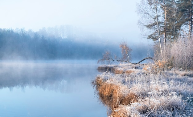 Первые заморозки на лесном туманном озере с красивой березкой на берегу, осенний пейзаж ярким утром