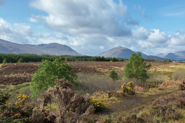 스코틀랜드 고원의 첫인상